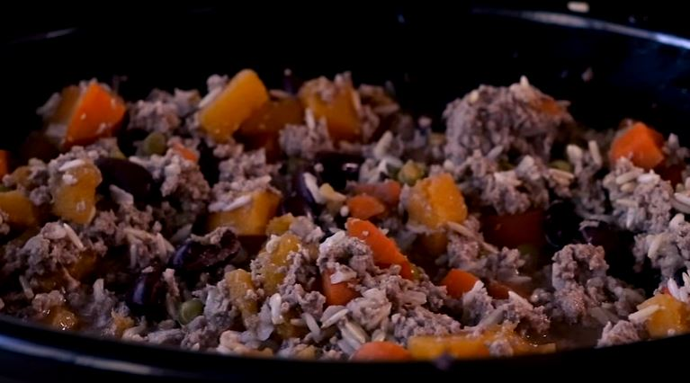 Easy Slow Cooker Dog Food [VIDEO]